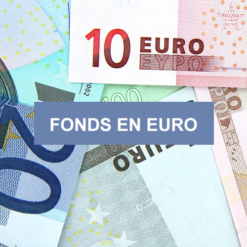 Fonds en euros APICIL EUROFLEX | Placement financier