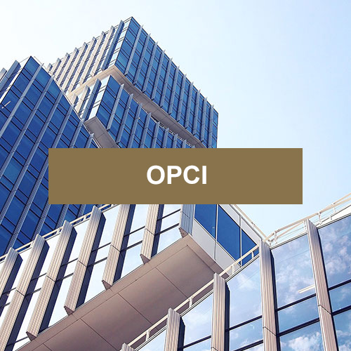 OPCI DYNAPIERRE (PART C) - Placement immobilier