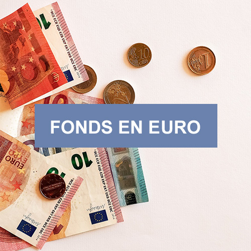Fonds en euros Euro Allocation Long Terme 2 | Placement financier