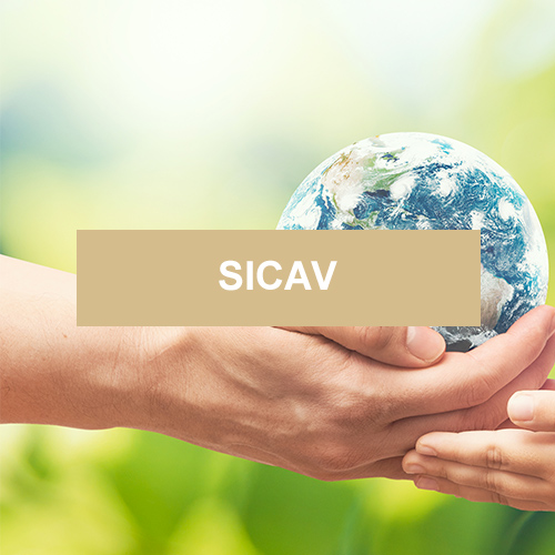 Pictet Global Environnemental Opportunities - Placement financier